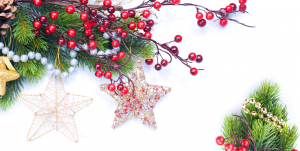 pine boughs with red berries, beads and gold stars